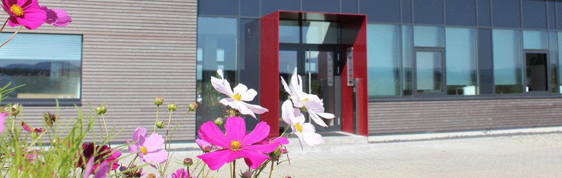 Haupteingang mit Blumen